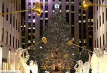 صورة 5 أفكار للاحتفال بالكريسماس على أكمل وجه في نيويورك