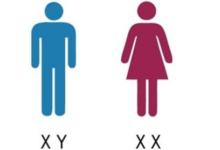 صورة أخيرًا.. باحثون يكشفون سر طول عمر المرأة