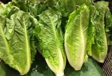 صورة تحذير من إدارة الأغذية والعقاقير: لا تأكل الخس فيه سم قاتل