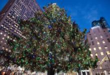 صورة عمدة نيويورك يعلن إغلاق الشوارع المحيطة بشجرة الكريسماس أمام حركة السيارات