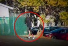 صورة بالفيديو.. إصابة 3 أشخاص في حادث طعن بكاليفورنيا