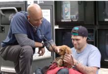 صورة «الطبيب الإنسان».. بيطري يعالج حيوانات المشردين فى شوارع نيويورك مجانا (صور)