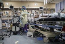 صورة دراسة ترصد وفاة 90% من مرضى كورونا على أجهزة التنفس الصناعى بنيويورك