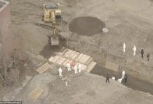 صورة سجناء نيويورك يحفرون قبور ضحايا فيروس كورونا (فيديو وصور)