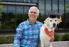 صورة بالصور.. كلب يحصل على الدكتوراة الفخرية فى الطب البيطرى بفرجينيا