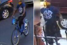 صورة بالفيديو.. مجرم ينزع سلسلة من عنق سيدة ويهرب في بروكلين
