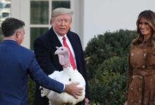 صورة ترامب سيقضي عطلة عيد الشكر في البيت الأبيض لأول مرة