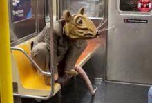 صورة بالفيديو.. رجل يتخفى فى مترو نيويورك بملابس فأر لضمان التباعد الاجتماعى