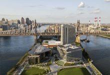صورة إعلان 2 ديسمبر من كل عام يومًا لـ«الإمارات» في نيويورك