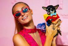 صورة باريس هيلتون تهدي كلبتها هدية ثمينة