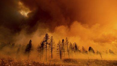 صورة حريق يقضي على 100 ألف فدان في كاليفورنيا