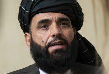 صورة طالبان تعين المتحدث باسمها سهيل شاهين سفيرا لها لدى الأمم المتحدة